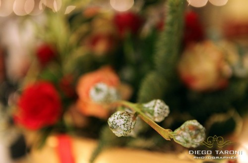 Festa Natale - Wedding Event Planner